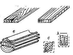 строиение древесины